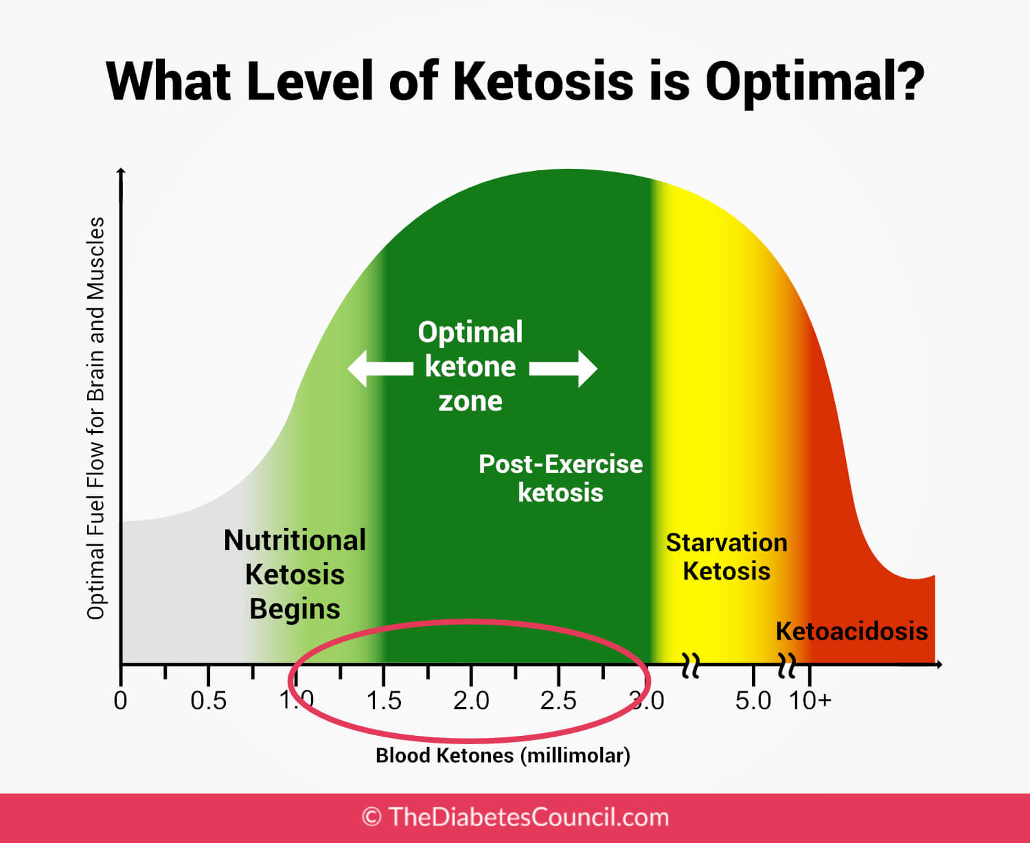 Nutritional Ketosis Blood Levels